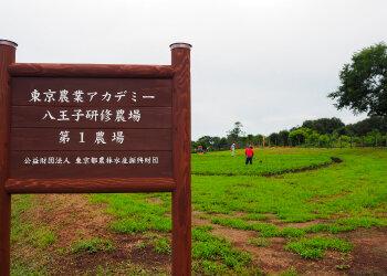 八王子研修農場